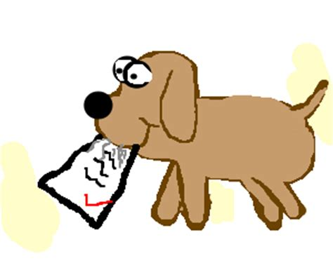 How to Properly Get Registration Papers for a Dog - Pets